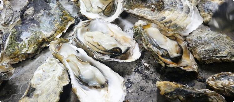 香川県・徳島県(鳴門)で牡蠣食べ放題があるお店・かき小屋2018-2019